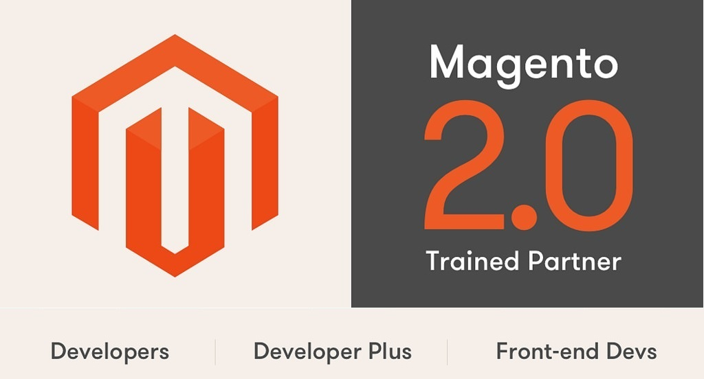 Magento Web eCommerce Development Services Provider Company