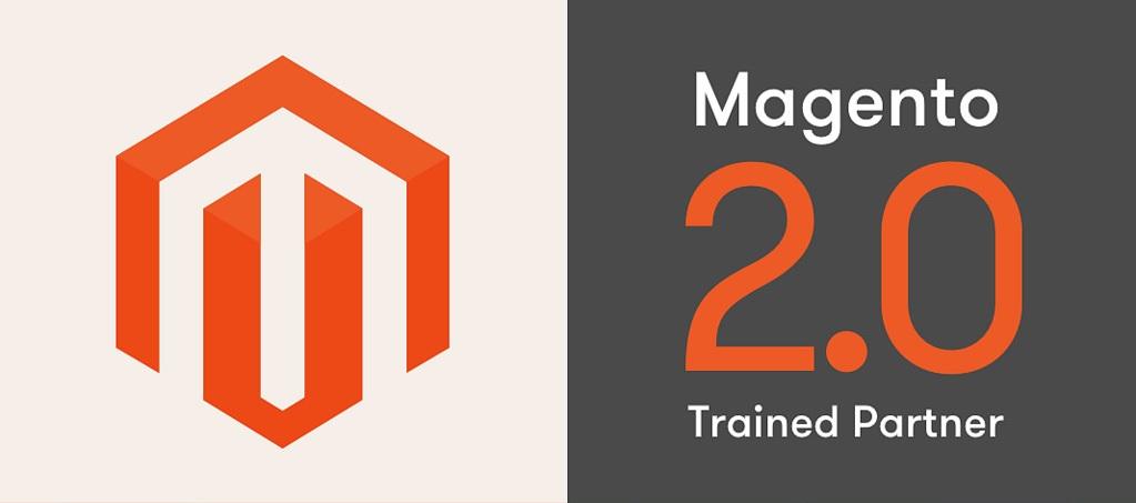 Magento Web Development Services Provider Company