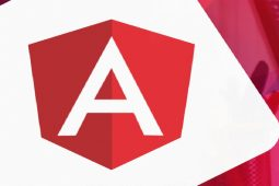 5 Things You Need to Know for AngularJS Development Services