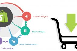 5 Reasons to Choose Shopify Web Development Services