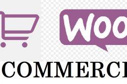 10 Reasons to Choose WooCommerce Web Development